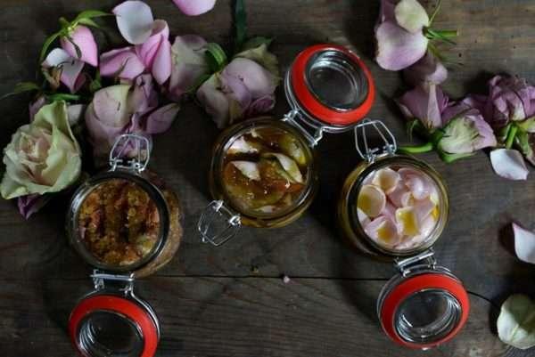 DIY Rosenpeeling Rosen rosa lila violett_
