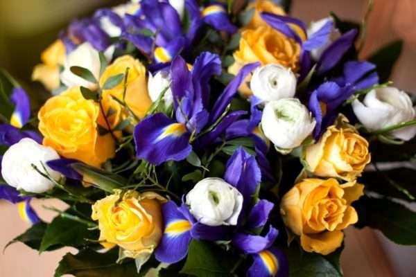 Frühlingsstrauß_ gelben Rosen_ blaue Iris_weiße Ranunkeln_Pistazie_Heidelbeere_Aralienblätter