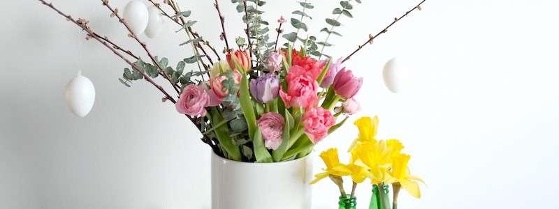 Tulpen online bestellen | Blumigo