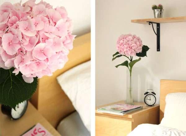 was tun wenn hortensienbl ten schlapp sind der vollbad trick f r schnitt hortensien blumigo. Black Bedroom Furniture Sets. Home Design Ideas