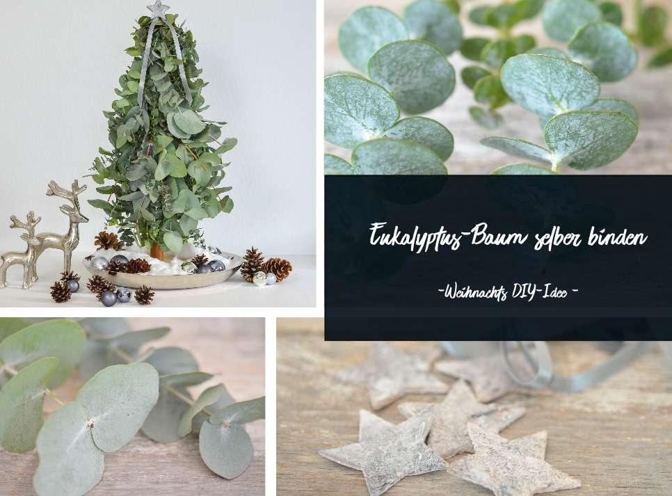 Eukalyptus Baumchen Selber Machen Eine Weihnachtliche Diy