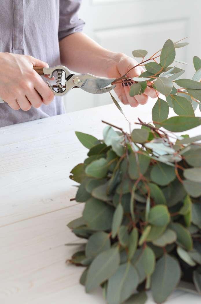 blumen ohne wasser affordable with blumen ohne wasser fleurop amaryllis pflanze pflegetipps. Black Bedroom Furniture Sets. Home Design Ideas