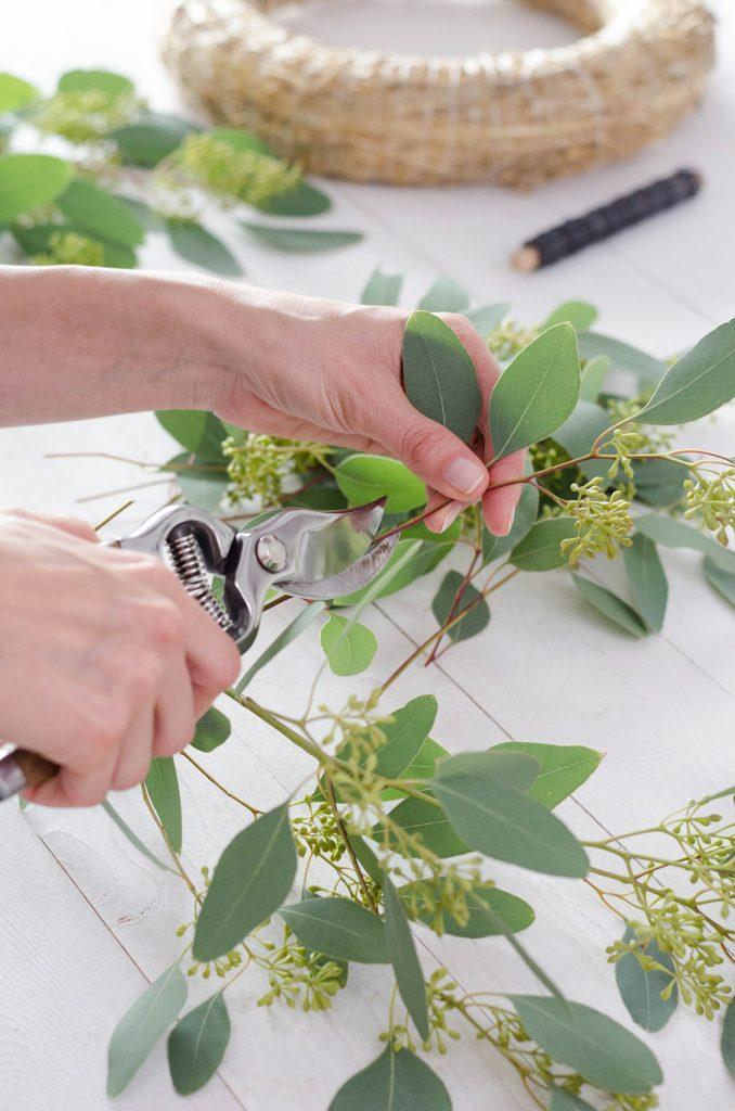 Das Zuschneiden von Greenery Material für einen modernen Adventskranz