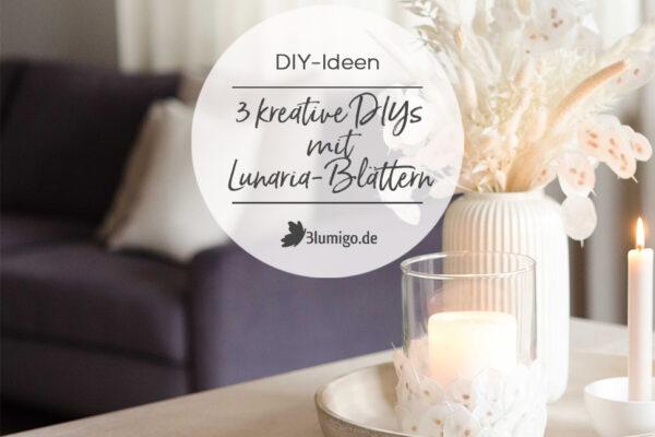 Lunaria DIYs_Teaser_quer