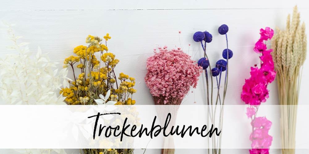 Trockenblumen in vielen verschiedenen Farben auf einem Tisch