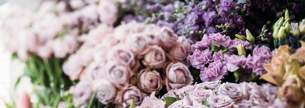 Bunte Auswahl an Schnittblumen