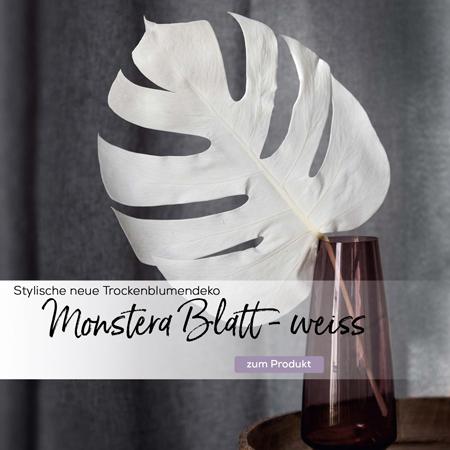 monstera-getrocknet-gebleicht-weiss-slider