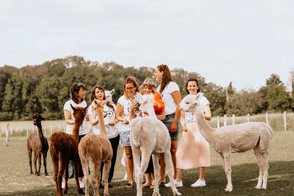 Junggesellinnenabschied und Braut mit Trockenblumen und Alpakas