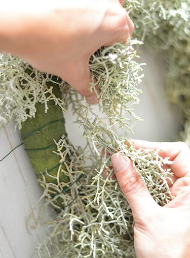 Stacheldraht auf Strohrömer binden