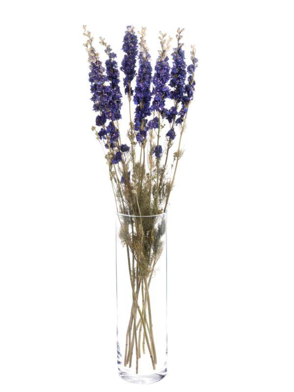 Ein ganzer Bund getrockneter Rittersporn in Blau-lila