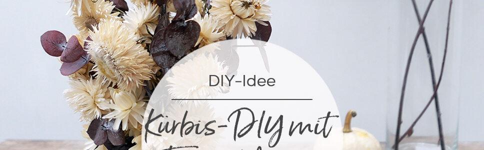 DIY-Anleitung Kürbis mit Trockenblumen