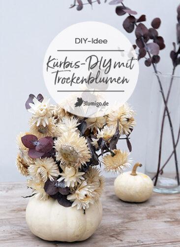 Kürbis DIY mit Trockenblumen