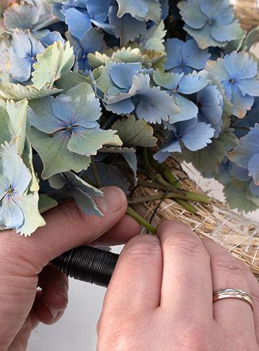 Hortensien mit Wickeldraht am Strohrömer befestigen