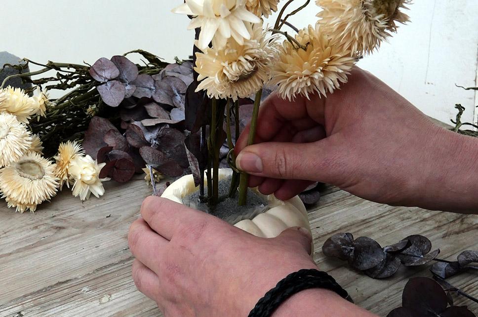 Trockenblumen in Kürbis Steckschaum stecken