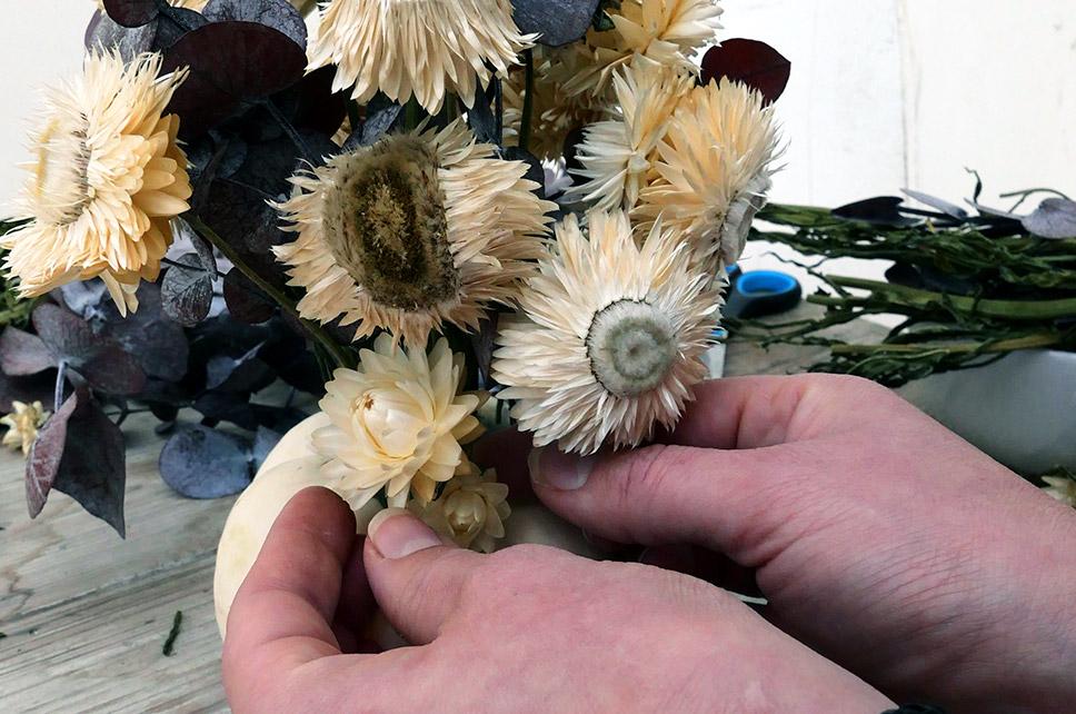 Kürbis Baby Boo mit Trockenblumen